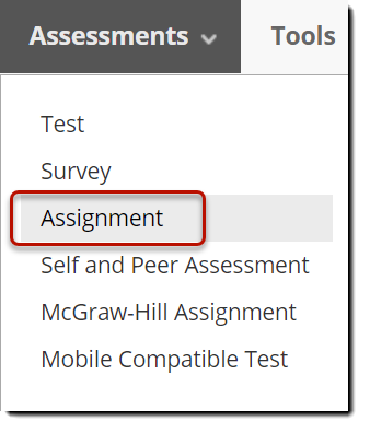 Assessments menu with Assignment circled in red.