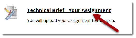 Assignmet icon and red arrow pointing to the title of the assignment